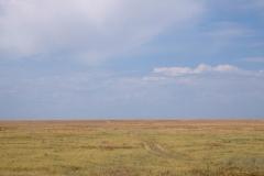 Für einen Tagesausflug fahren wir ins angrenzende Naturreservat. Steppe, soweit das Auge reicht.