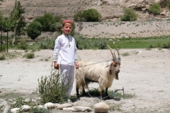 Junge mit Ziegenbock - beide in weißem Gewand