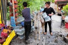 Alles muss hier mit Eseln transportiert werden