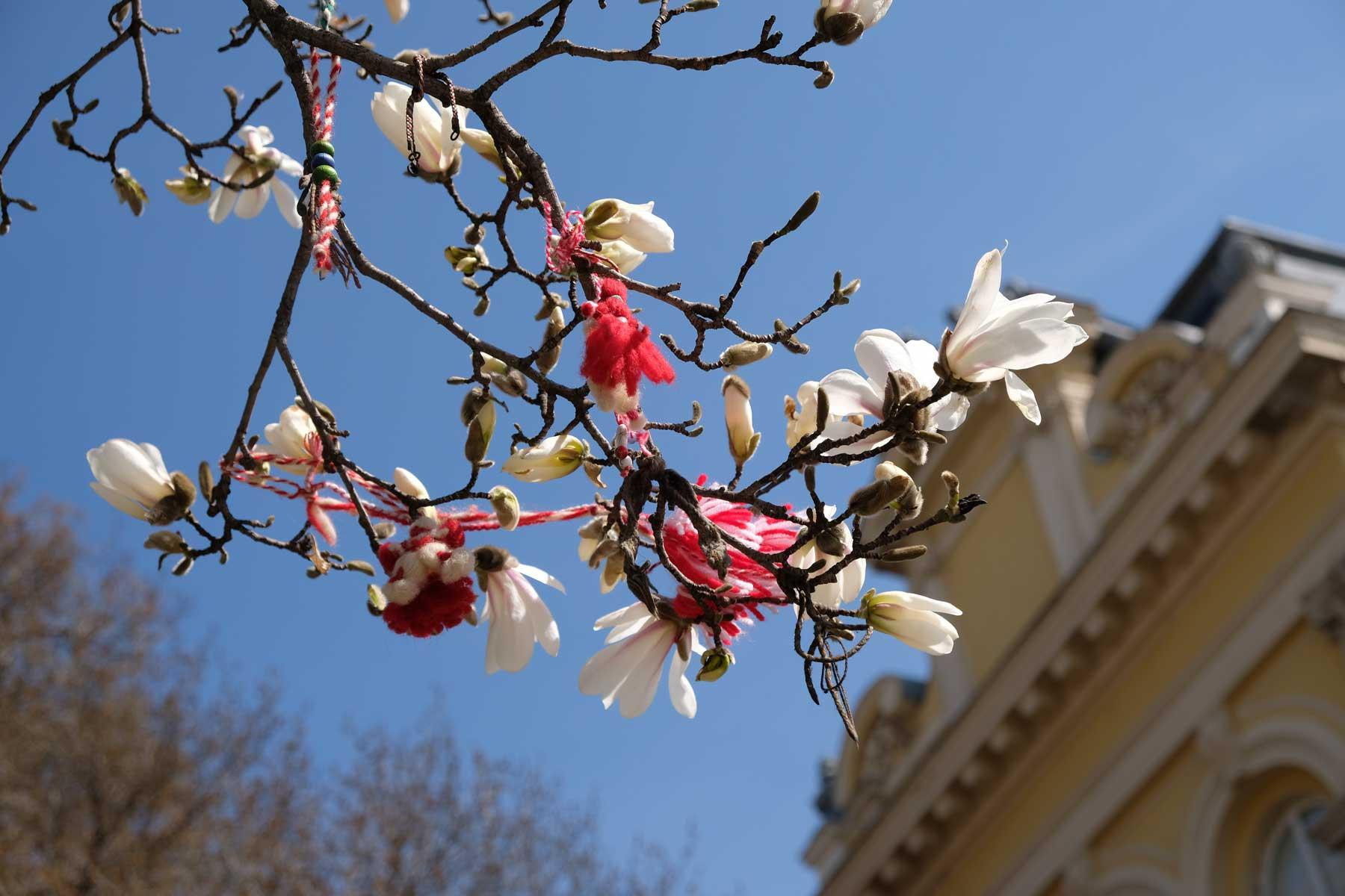 Mit Martenizi begrüßen wir den Frühling, ein typischer Brauch in Bulgarien