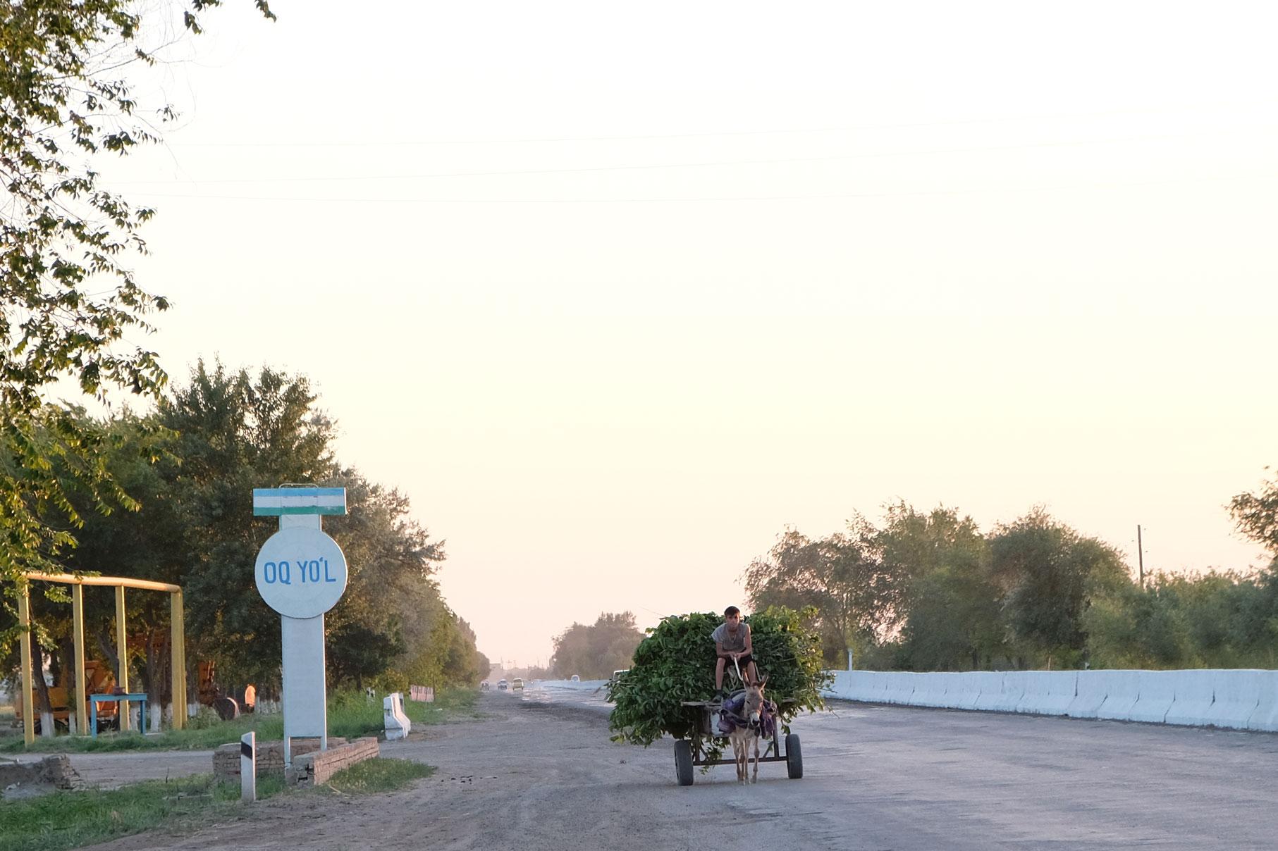 Ein gut beladener Eselkarren, die uns hier in Usbekistan besonders häufig auffallen