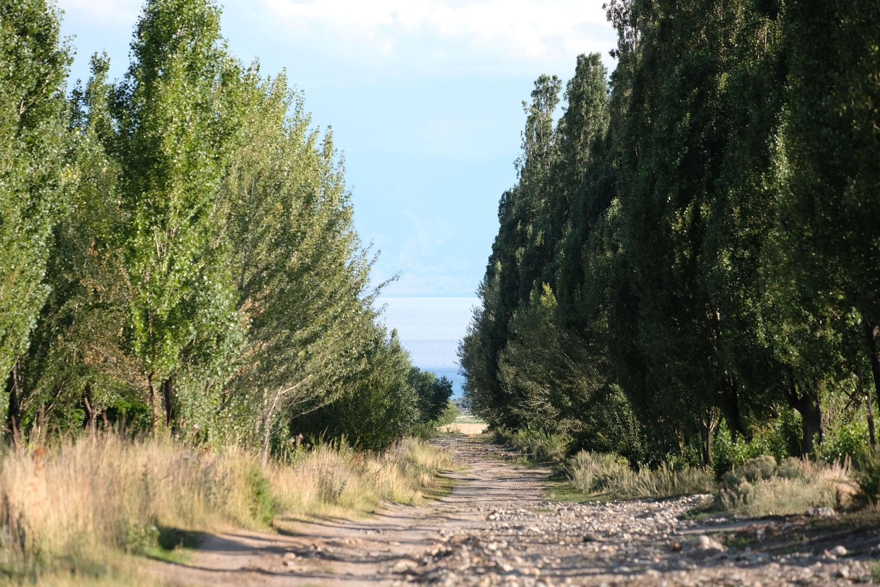 Auf dem Weg in Richtung Strand...