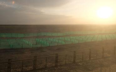 Ein Blick aus dem Fenster zeigt uns die Weite der Taklamakan-Wüste. Mit kilometerlangen Sandfängen wird versucht, die Schienen freizuhalten.