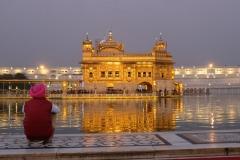 Der Sikh-Tempel in Amritsar ist von Wasser umgeben und erstrahlt abends im goldenen Glanz