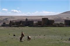 Blick auf die ehemalige Stadtmauer Anis. Durch eine Schlucht vom Türkischen Territorium getrennt, erkennt man im Hintergrund Armenien.