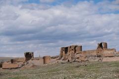 Die alte Stadtmauer lässt anhand ihrere beeindruckenden Größe das einstige Ausmaß Anis erahnen