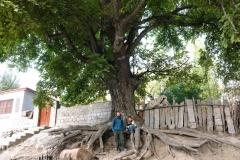 Am Tag wird es angenehm warm und Wazirs Sohn begleitet uns ins Dorf