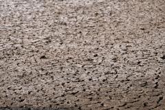 In dem aktuell nicht genutzen Becken ist der Boden aufgesprungen und erinnert uns an die versalzenen Böden, die wir in Usbekistan viel zu Gesicht bekamen