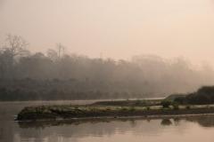 Im Chitwan Nationalpark freuen wir uns nach drei Wochen Kathmandu über Ruhe, gute Luft und die Natur