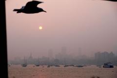 Abendstimmung auf dem Weg zurück nach Mumbai