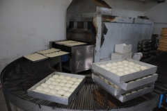 Bleche voller Teig auf dem Weg zum Ofen