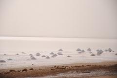 Angehäuftes Salz trocknet in der Sonne