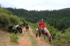Obwohl wir unsere Pferde nun besser im Griff haben, wird, sobald wir anhalten, doch immer gefressen :-)