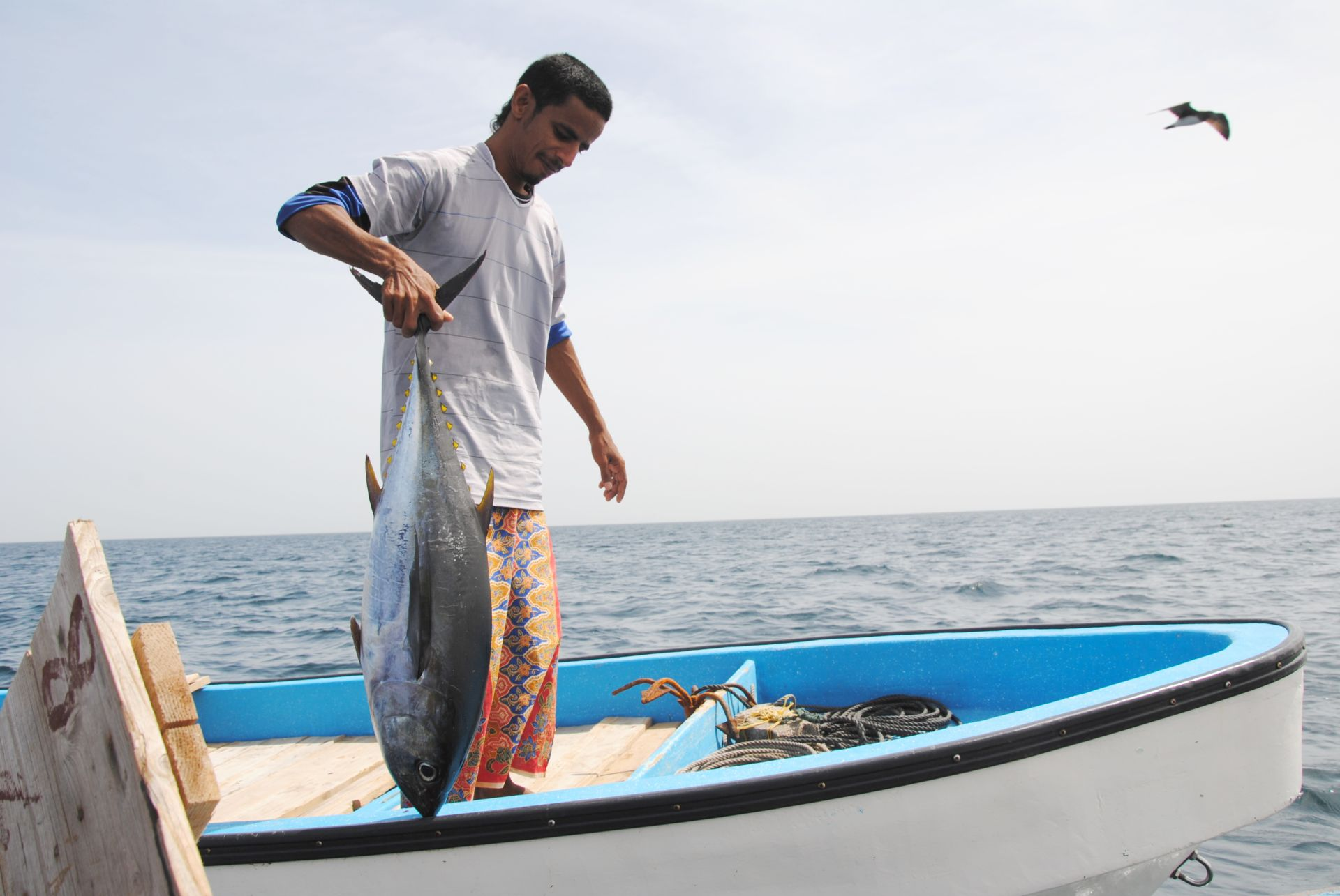 Ein Mann hält einen Thunfisch auf einem Boot