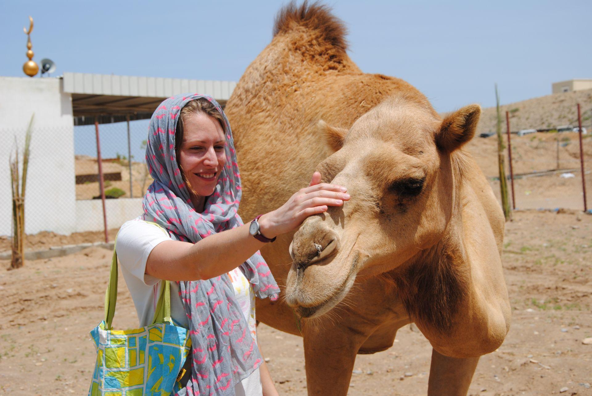 Leo streichelt ein Kamel am Kopf