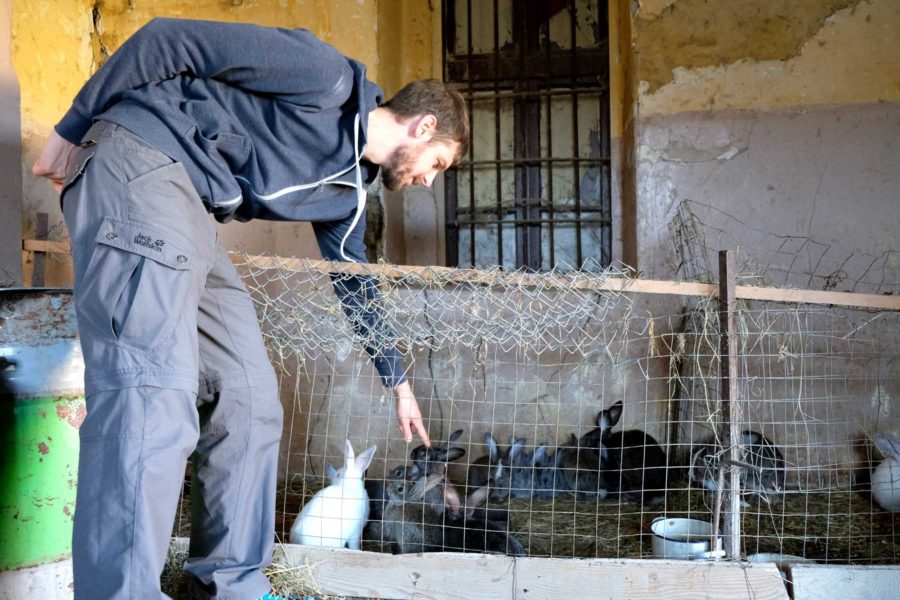 Sebastian streichelt die niedlichen Hasen. Zu diesem Zeitpunkt wissen wir noch nicht, dass wir die Tierchen später beim Abendessen wiedersehen werden...