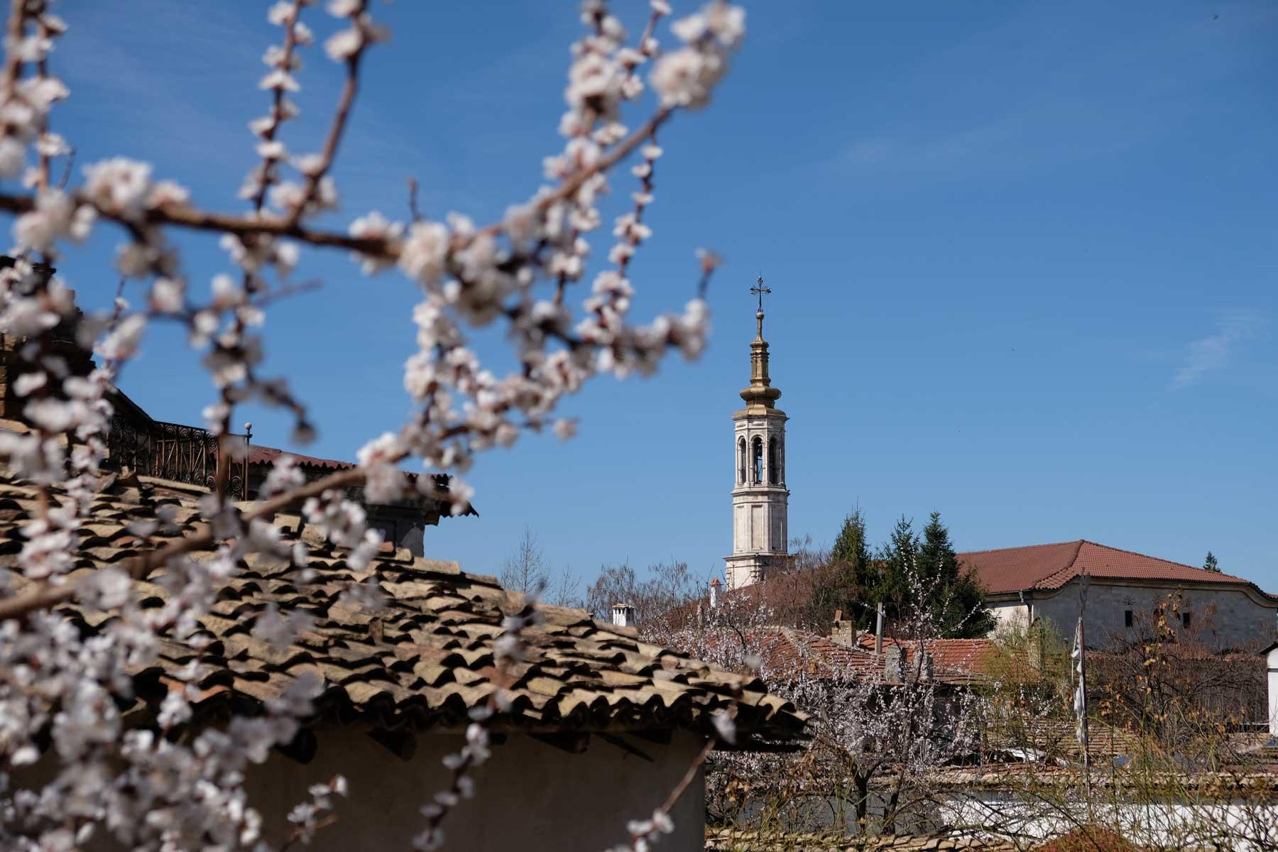 Ein Kirchturm und ein Baum mit weißen Blüten