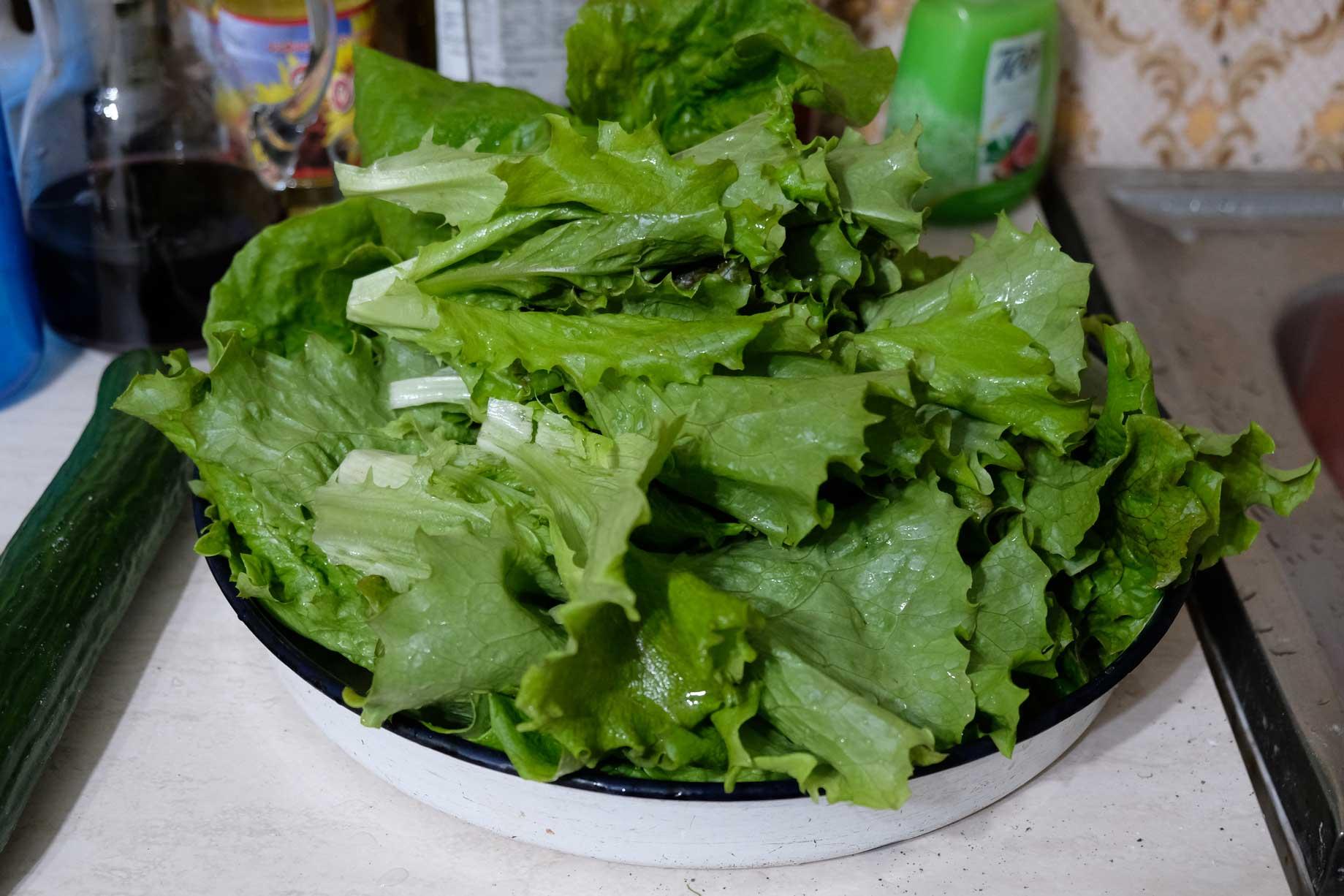 Frischer Salat in einer großen Schüssel