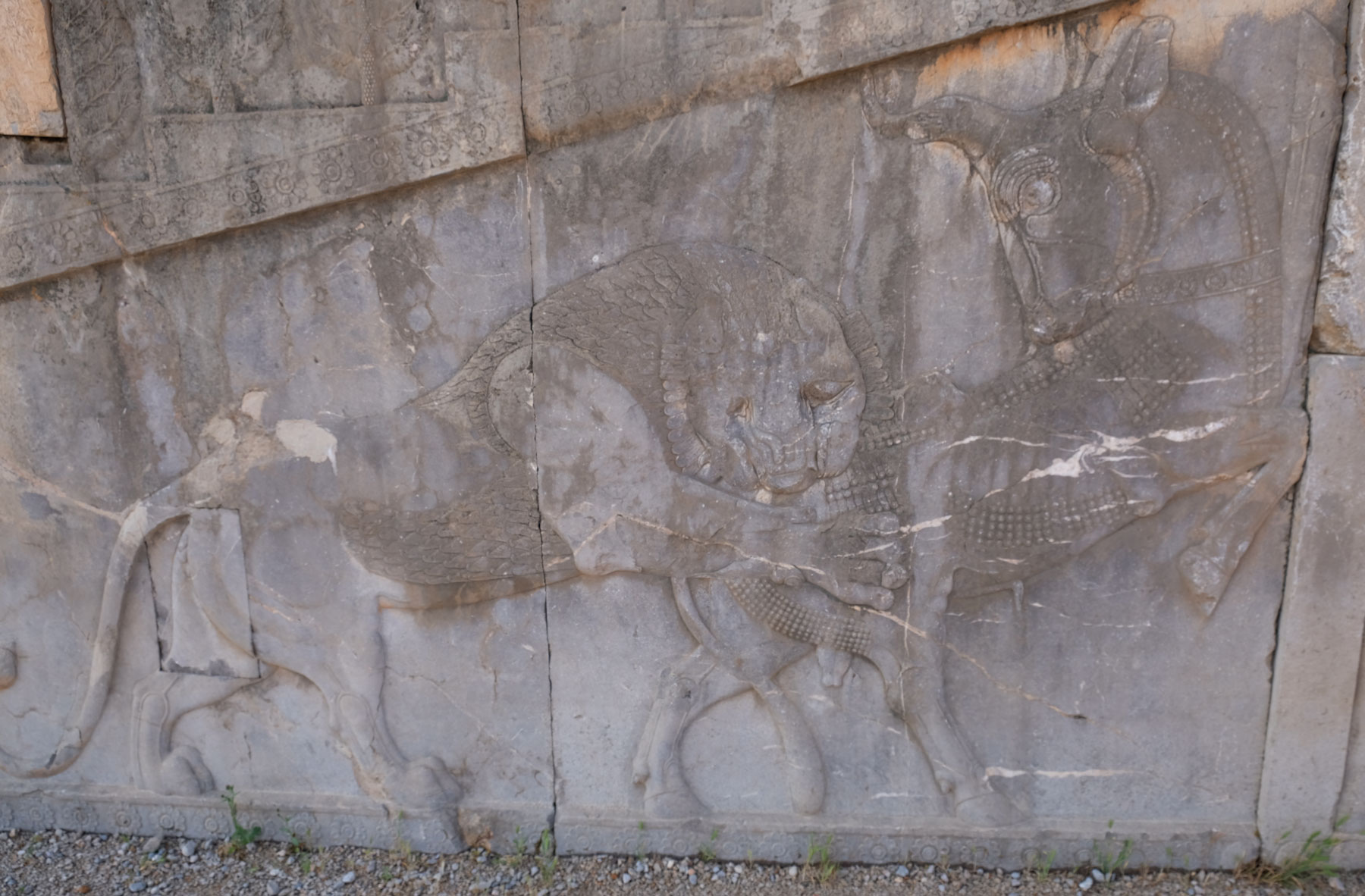 Eine Darstellung auf zwei Steinplatten, in der ein Löwe einen Stier beißt