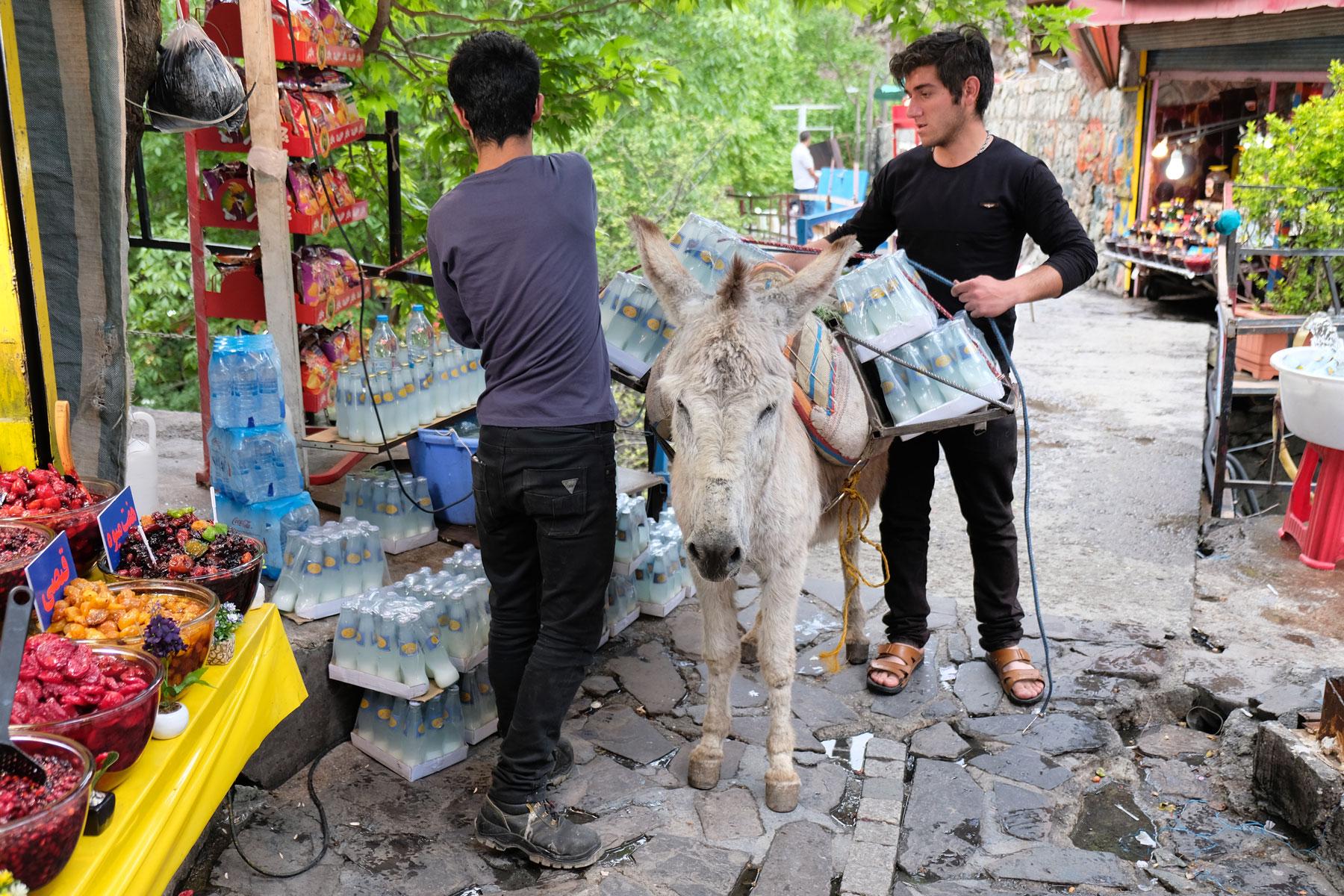 Zwei Männer beladen einen Esel mit Wasserflaschen