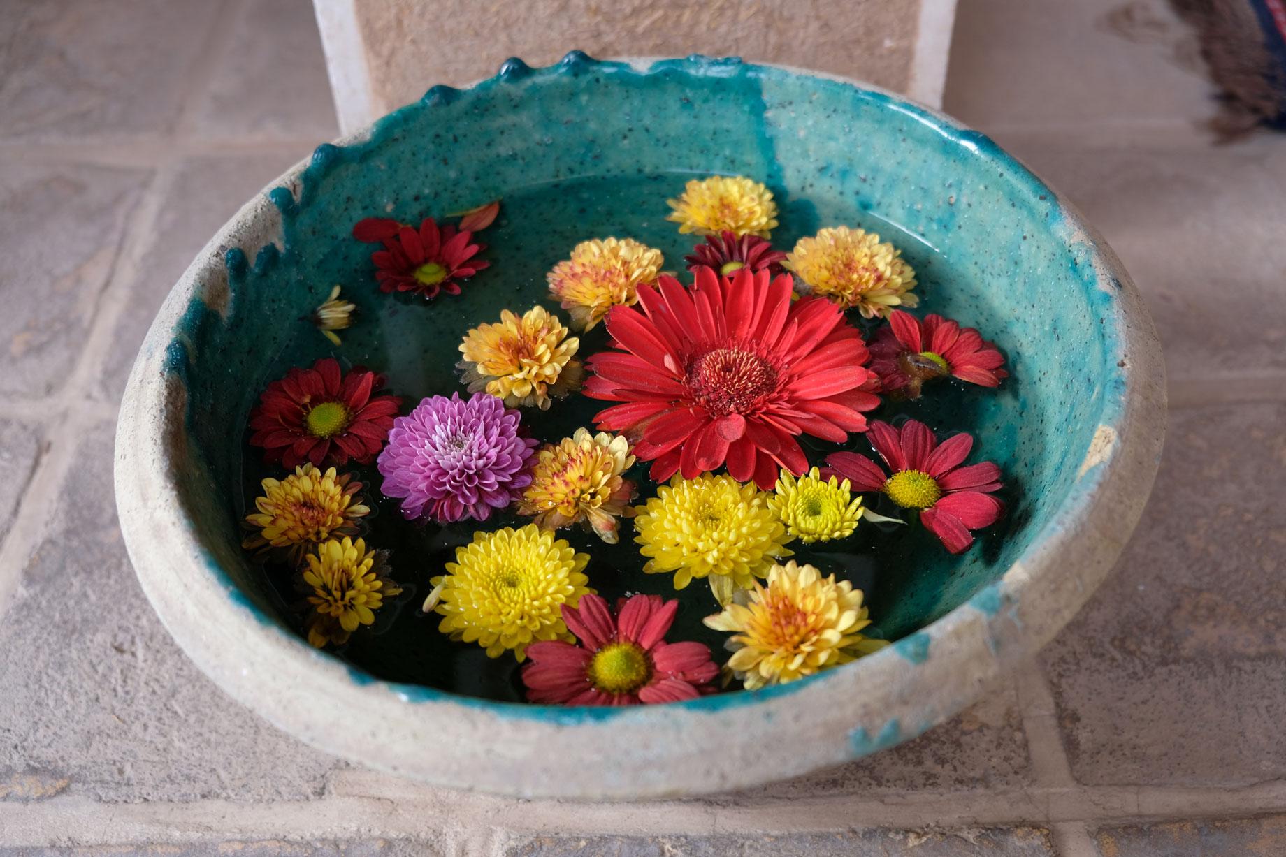 Blumen schwimmen im Wasser eines runden Behälters