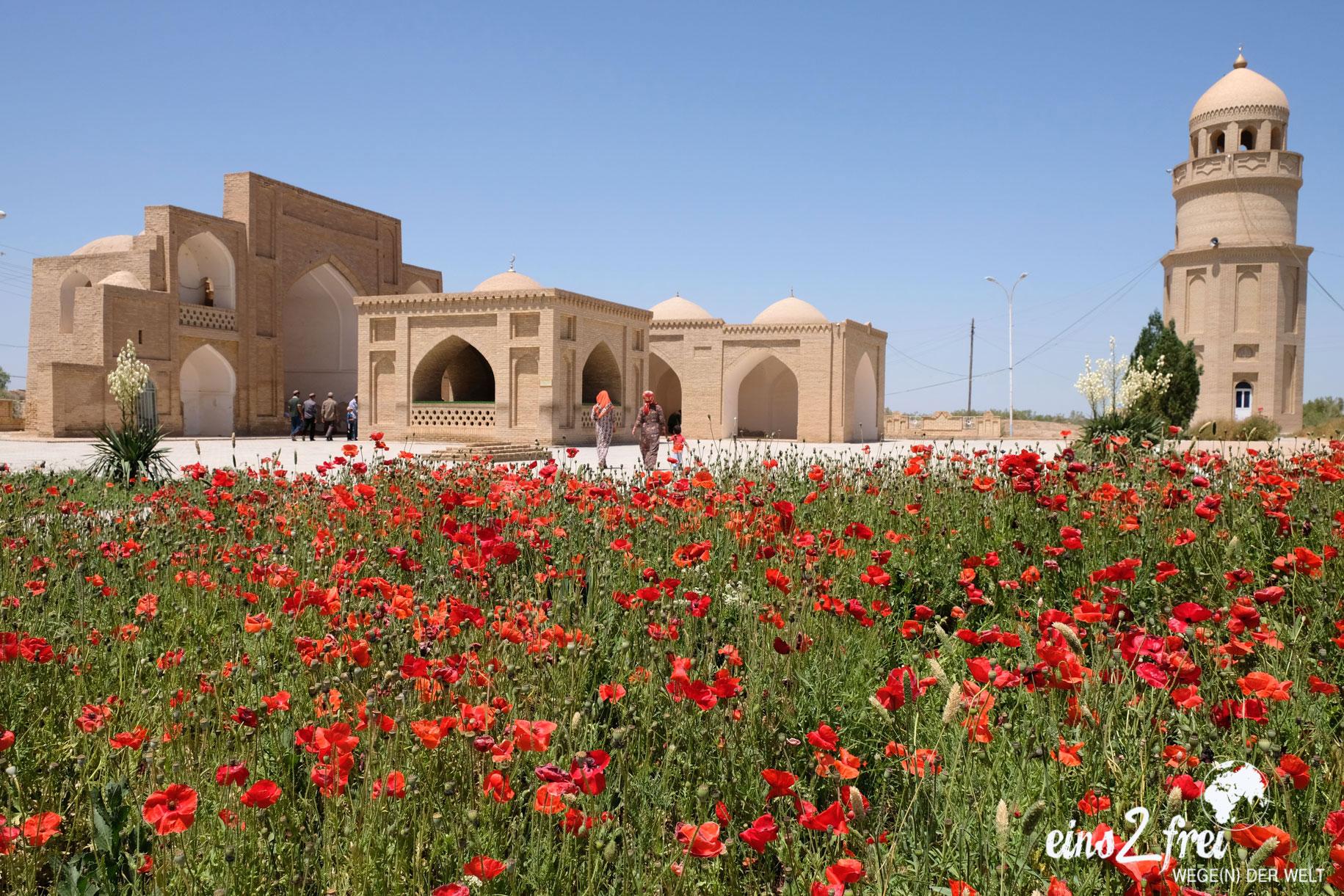 Ein Mausoleum und ein Mohnfeld in Merv in Turkmenistan