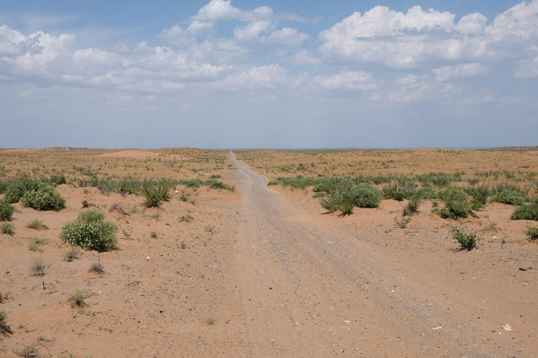 Schotterpiste in der Wüste