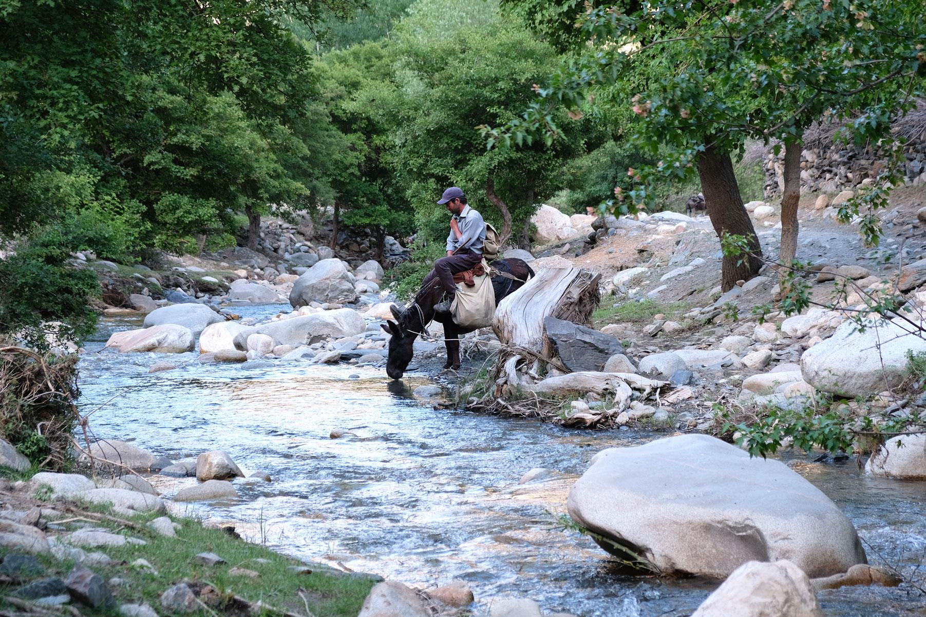 Ein Reiter sitzt auf einem Pferd, das aus einem Fluss trinkt