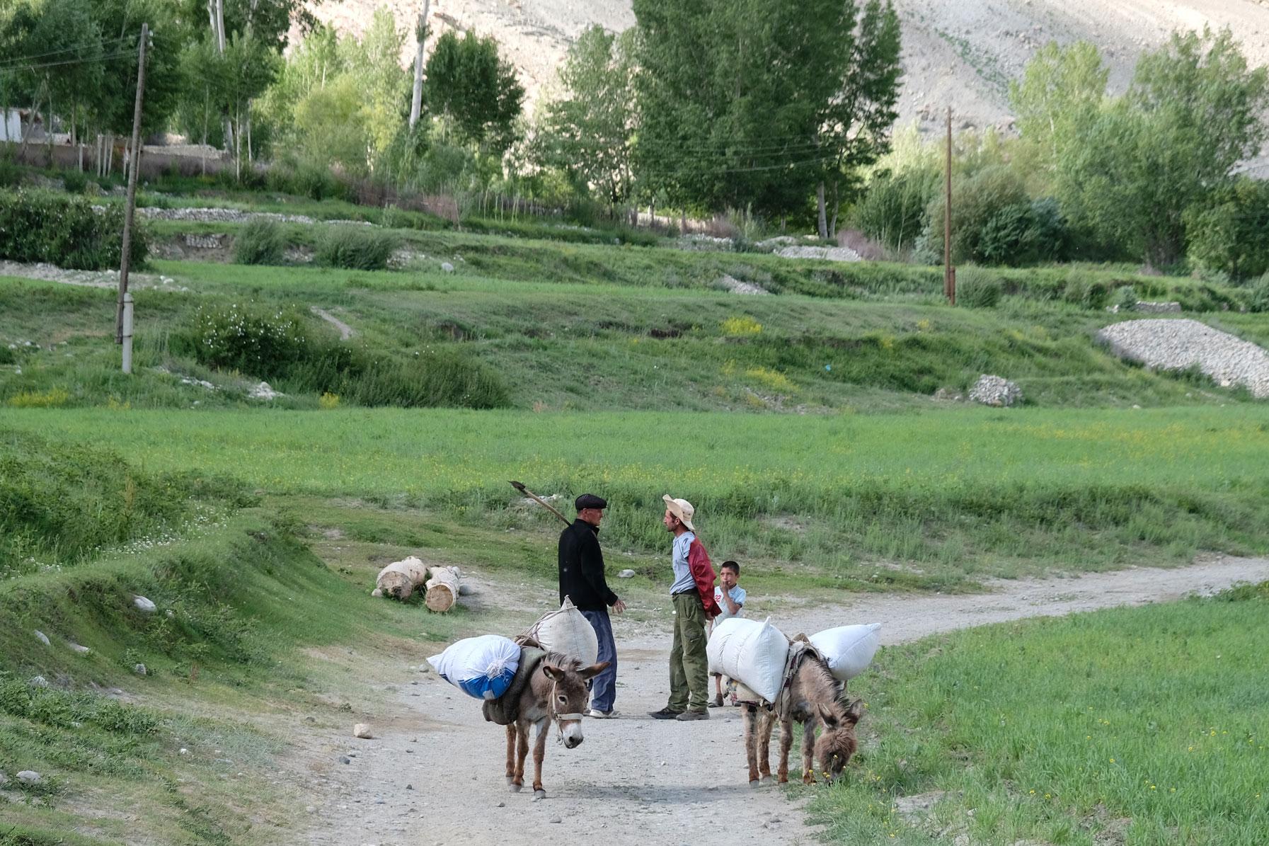 Zwei Esel transportieren Säcke. Zwei Männer unterhalten sich.