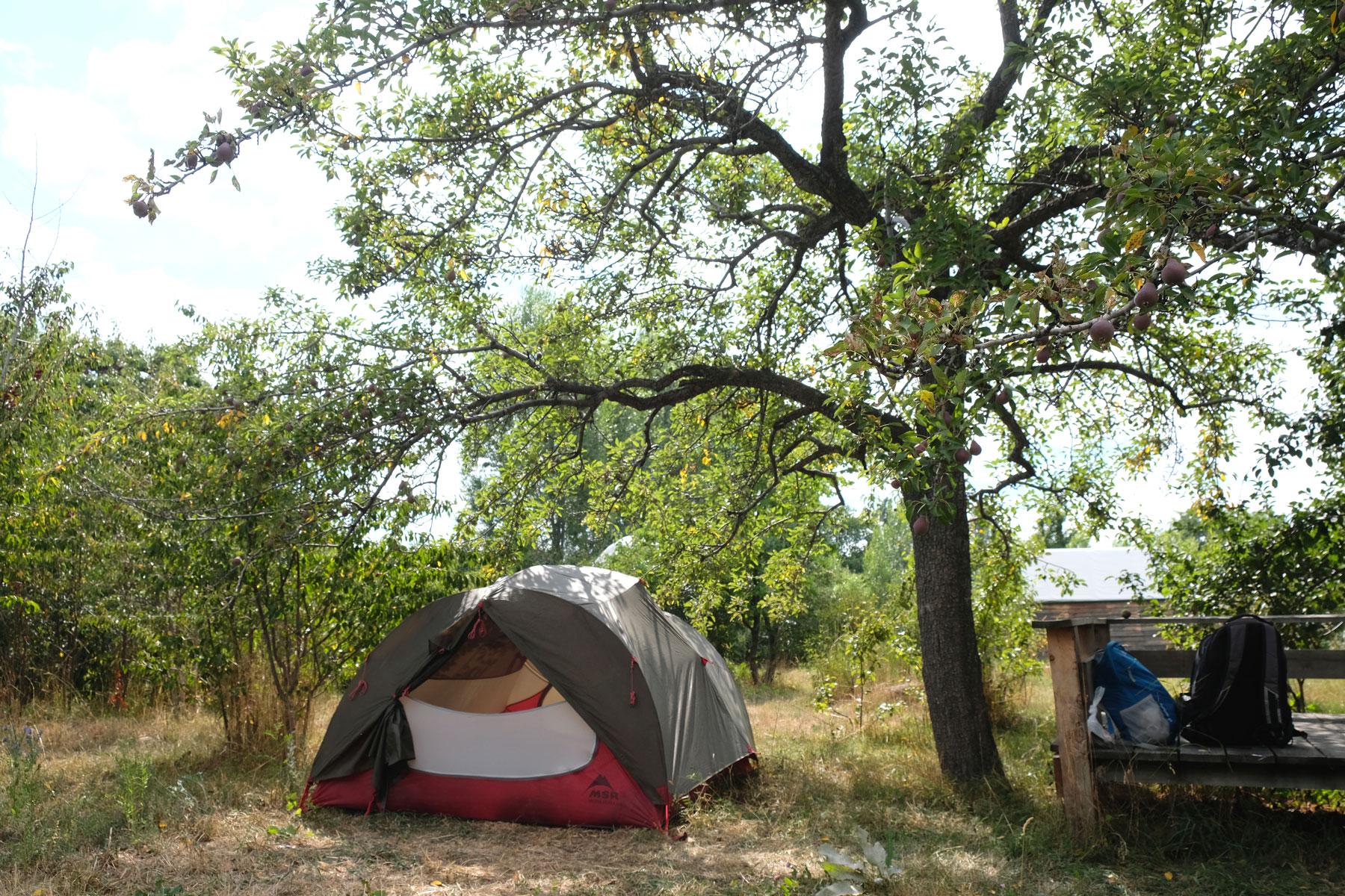 Ein Zelt steht auf einer Wiese unter einem Baum in der Öko-Lodge Bel-Zhan.