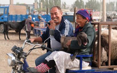 Zwei Menschen auf einem Dreirad. Eine Frau hält ein Lamm auf dem Arm.