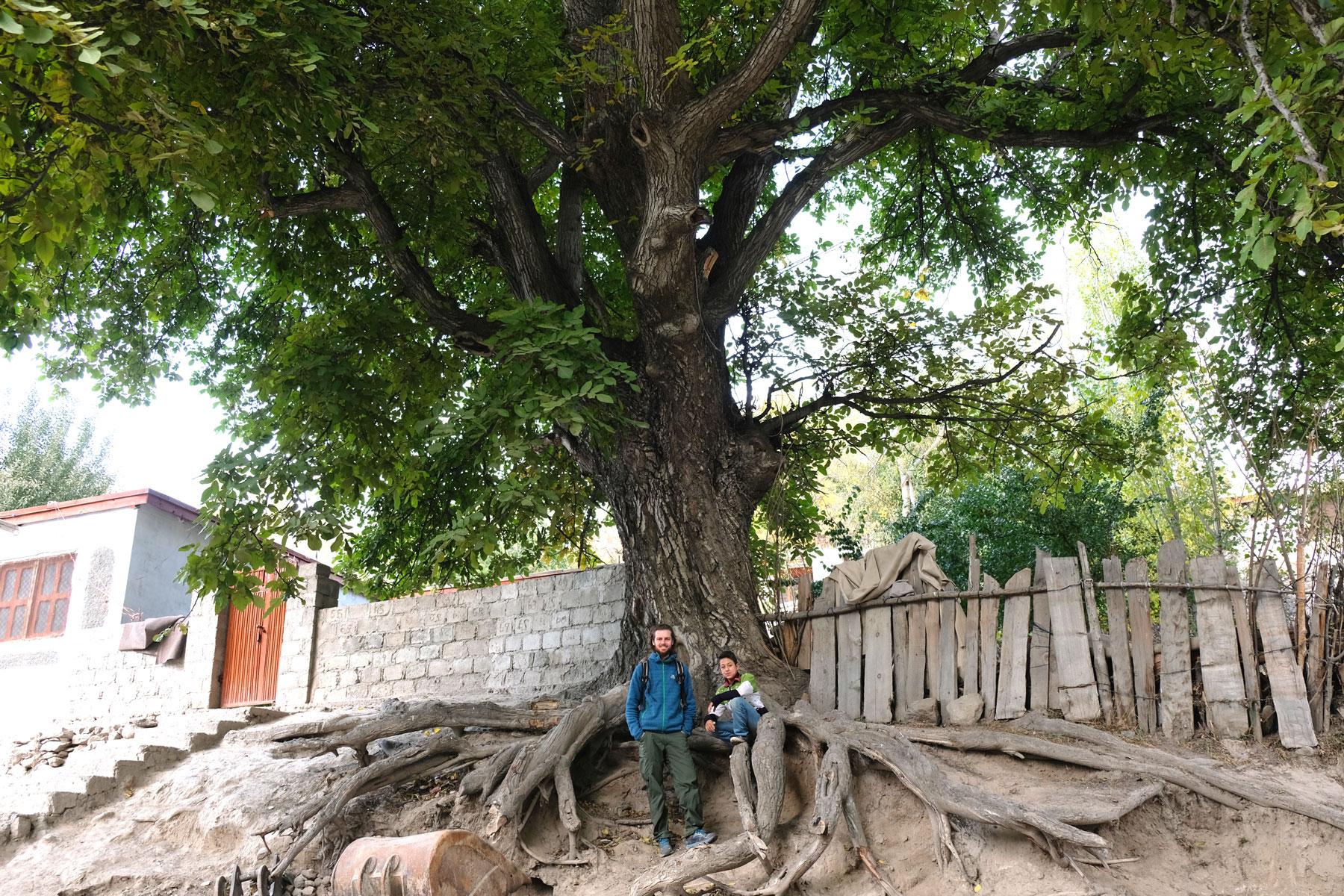 Sebastian und ein Junge stehen unter einem großen Baum.