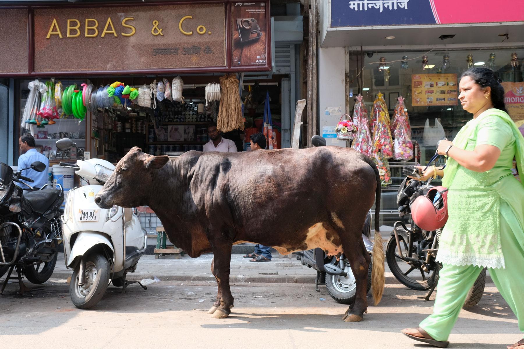 In Mumbai steht eine Kuh auf einer Straße, auf der Menschen laufen.