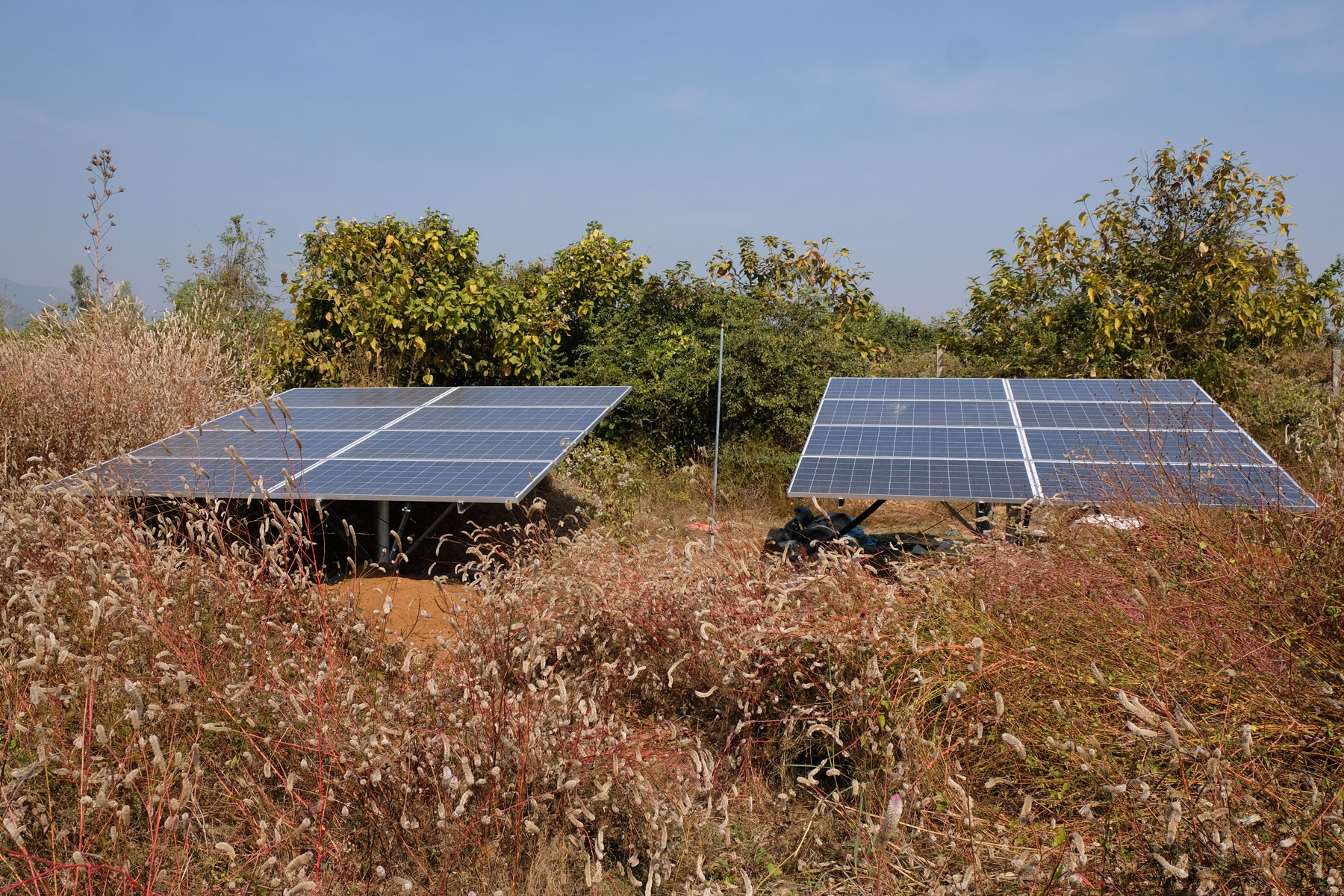 Zwei Solarzellen-Panele auf einer Wiese.