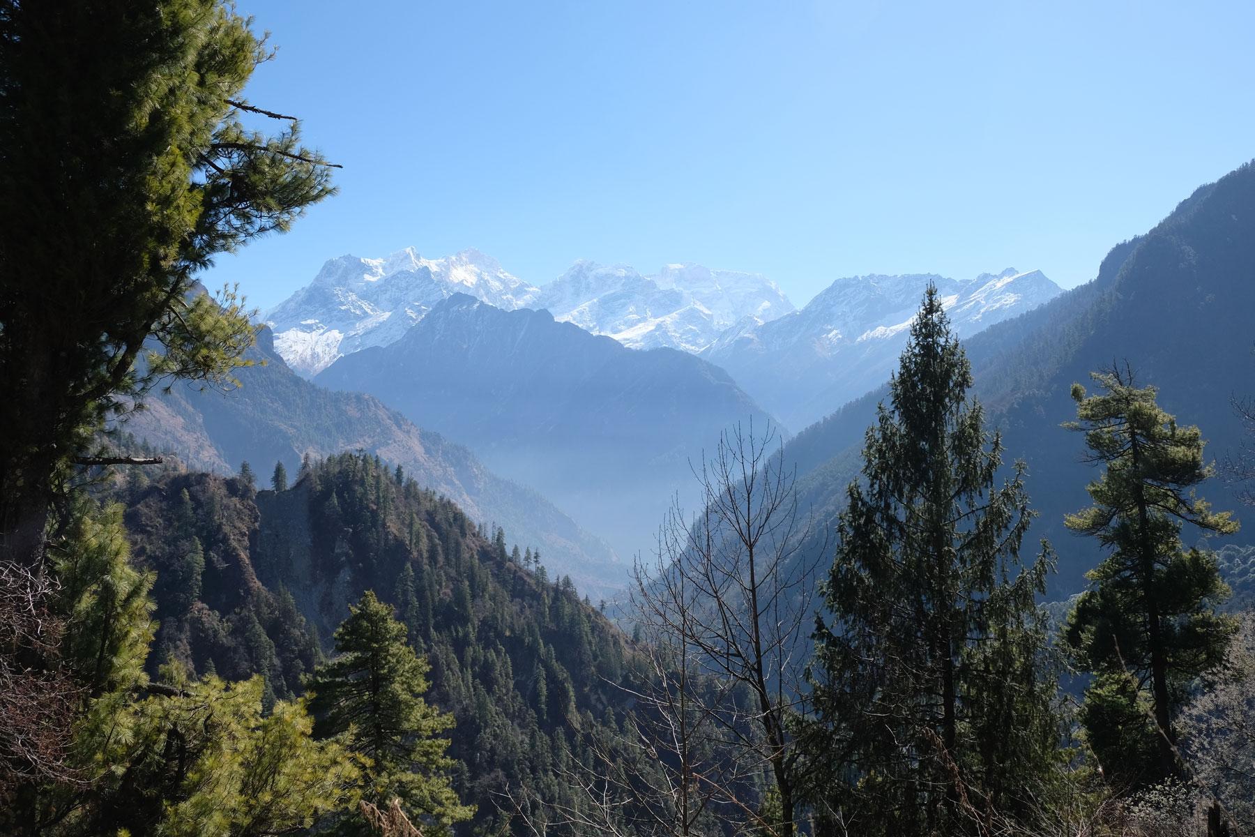 Bäume und schneebedeckte Berge auf dem Annapurna Circuit.