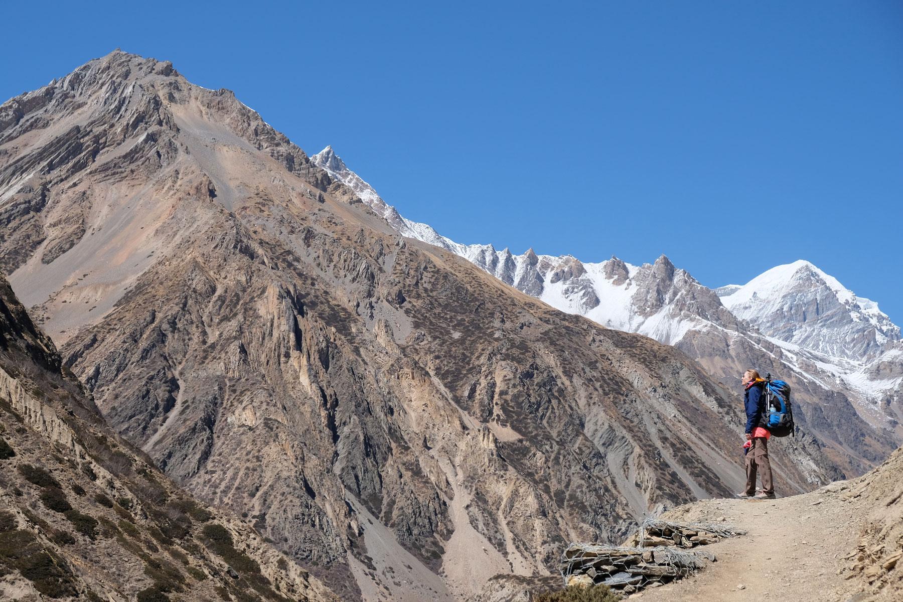 Leo auf einem Wanderweg im Annapurnagebirge.