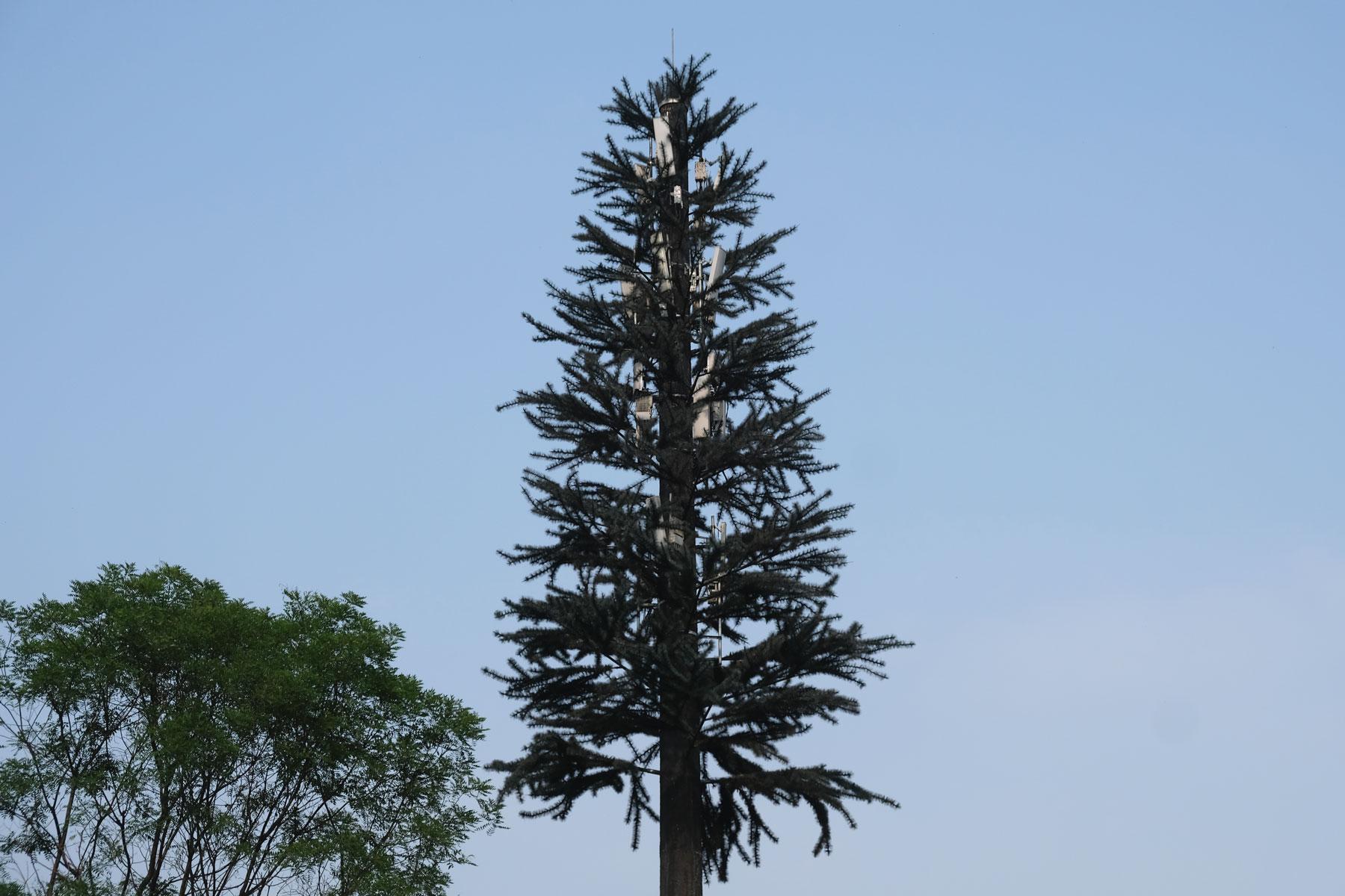 Ein Mobilfunkmast, der als Tannenbaum getarnt wurde.