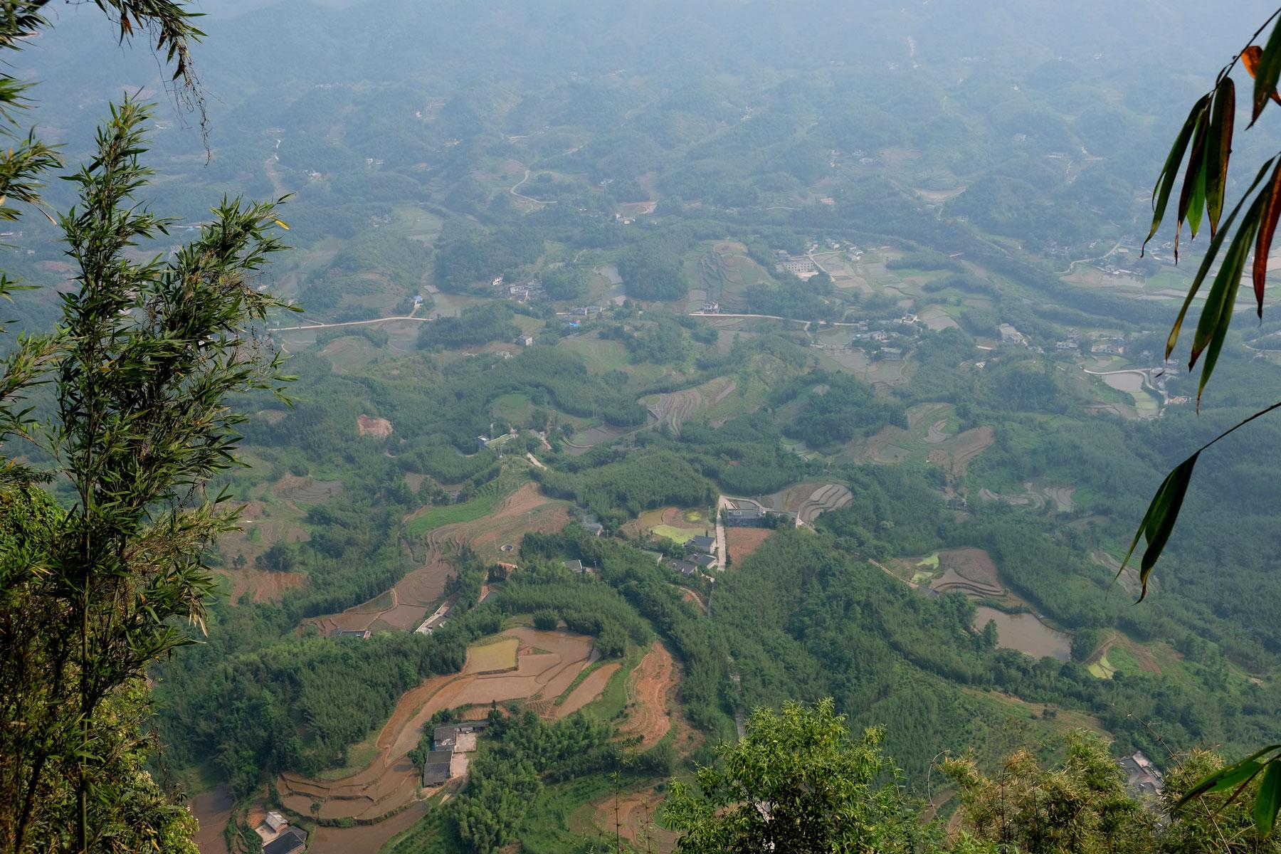 Felder und Wald in Sichuan.