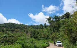 Sebastian steht neben einem weißen Auto in einem thailändischen Nationalpark.
