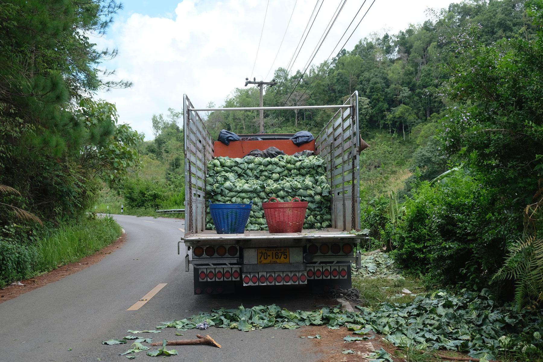Ein zur Hälfte mit Kohl beladener Lastwagen im Nordosten Thailands.