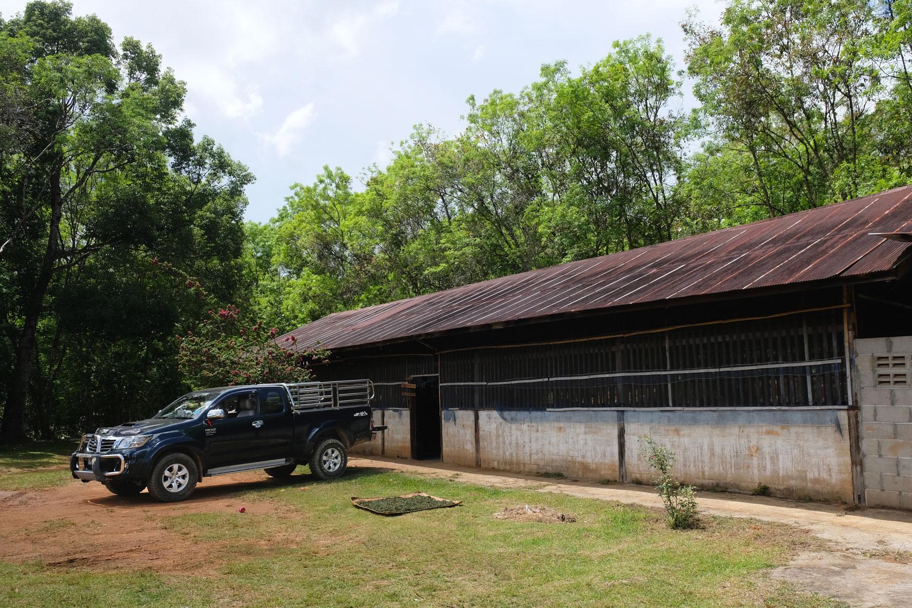 Eine Teefabrik in Ban Rak Thai.