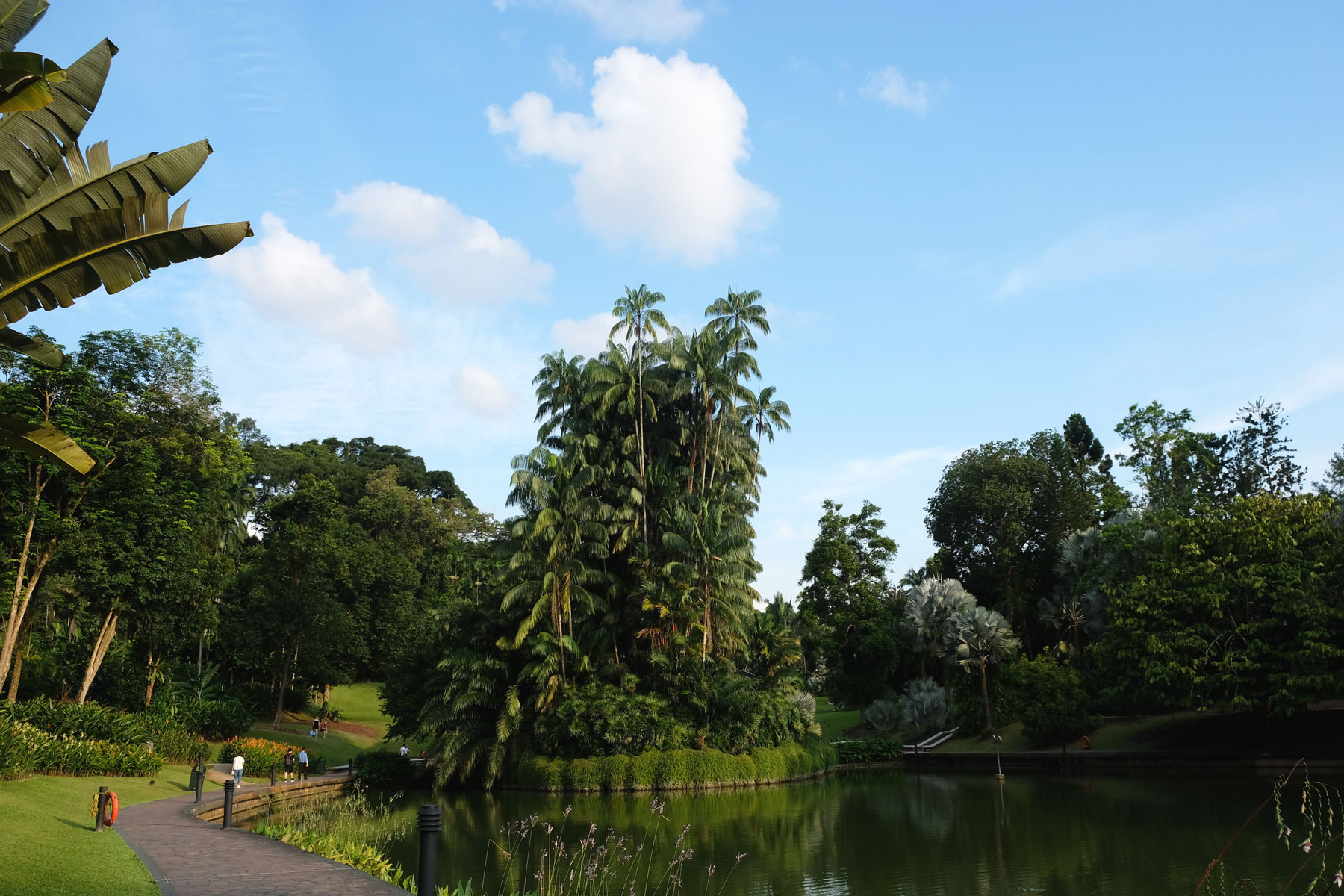Eine Insel im Botanischen Garten Singapur leuchtet in der Sonne