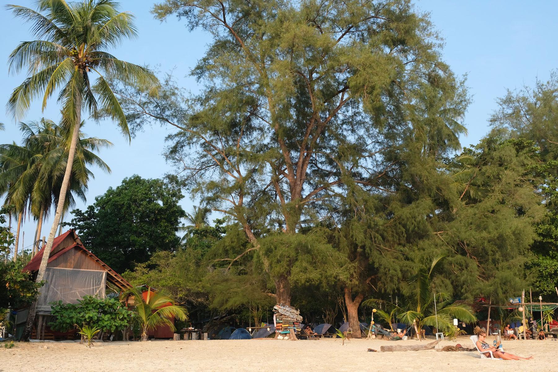 Der Campingplatz auf der Pulau Kapas ist von großen Bäumen versteckt