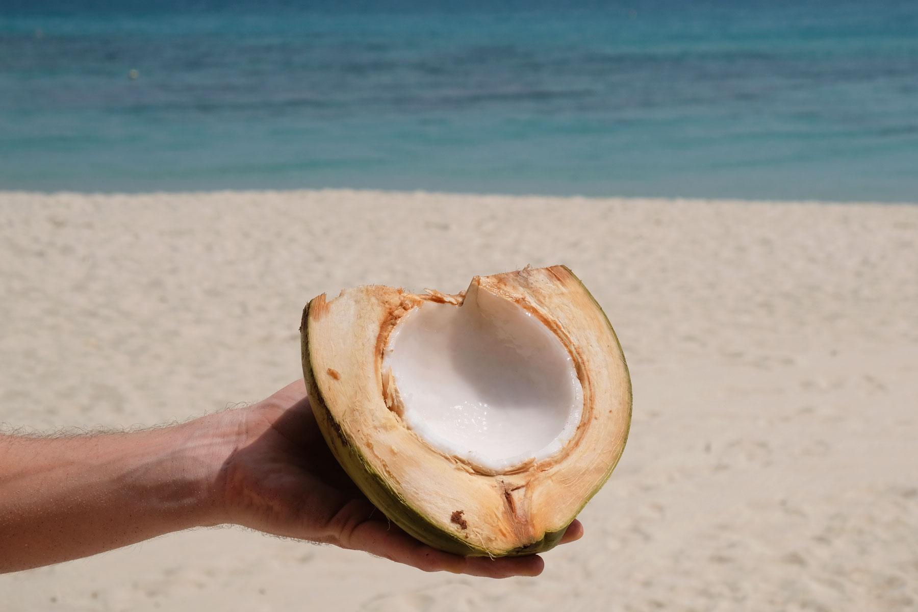 Eine halbe Kokosnuss wird von einer Hand gehalten