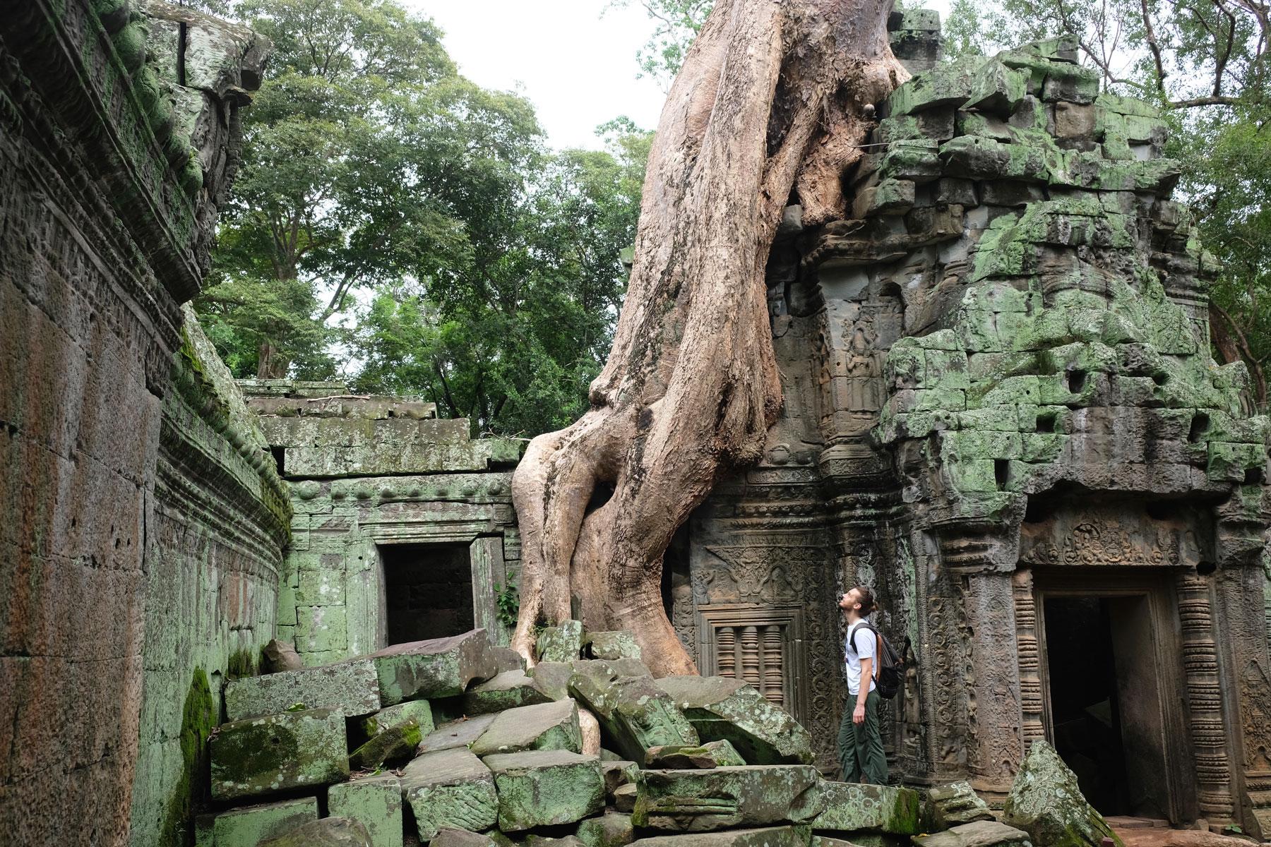 Sebastian steht vor den riesigen Wurzeln im Ta Prohm Tempel in Angkor Wat