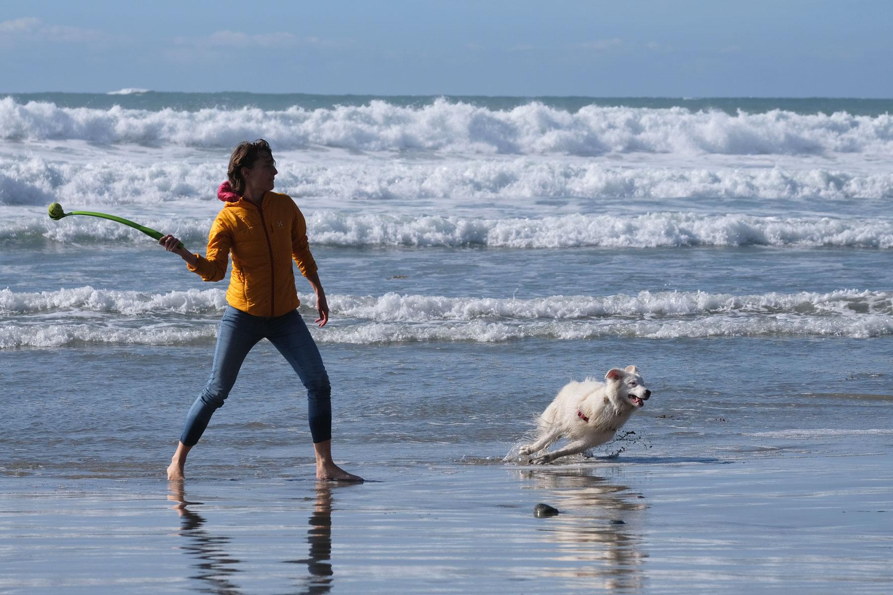 Leo wirft Bodhi am Strand einen Ball
