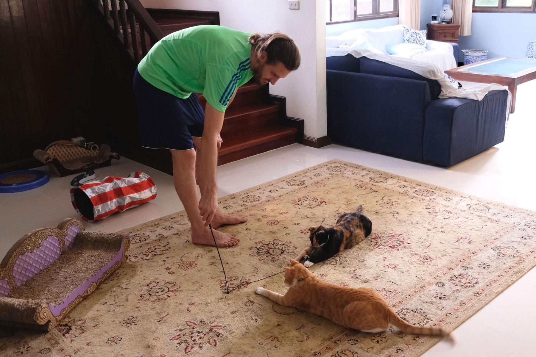 Sebastian spielt während unseres house sits in Bangkok mit den Katzen Foxy und Rainbow im Wohnzimmer.