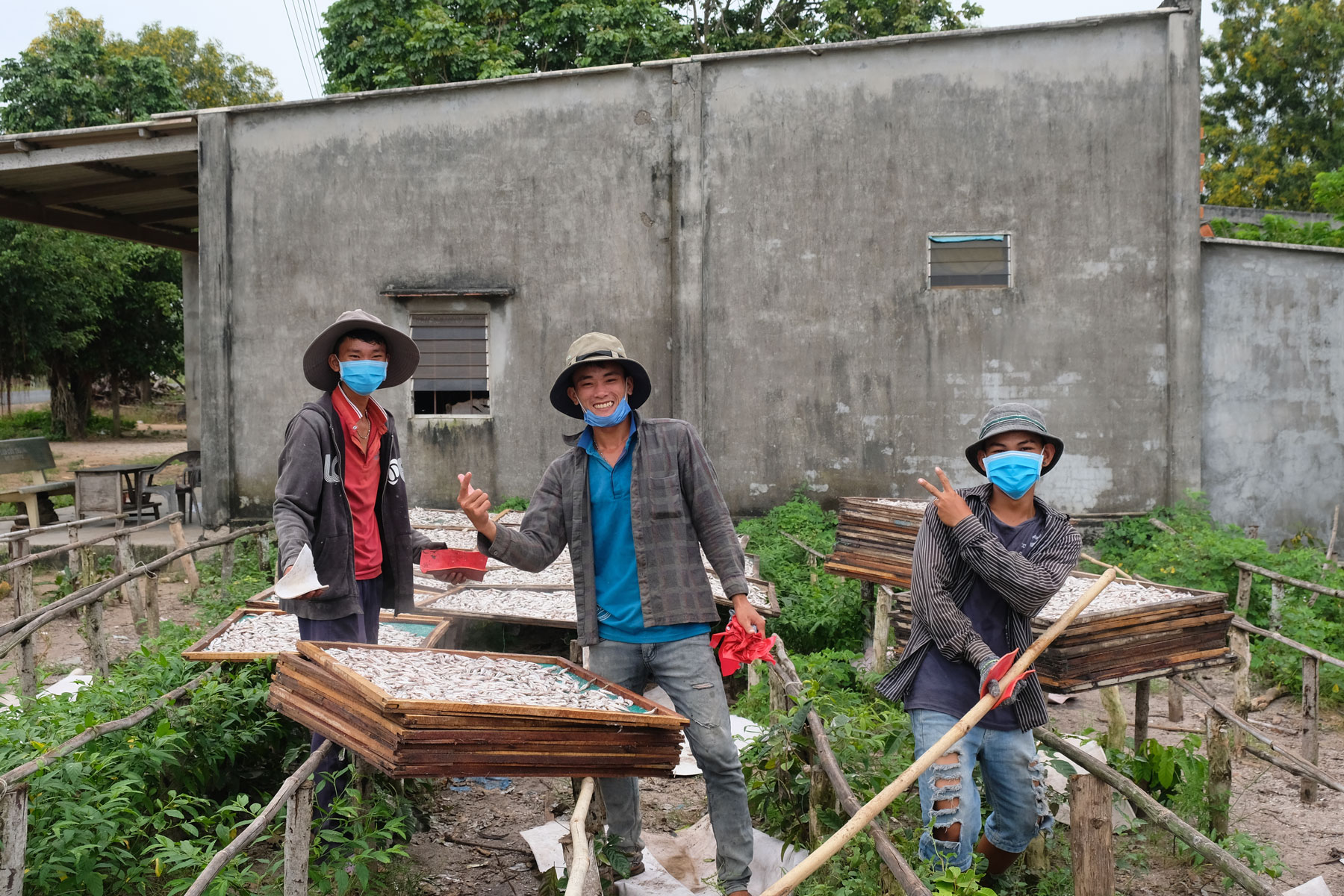 Junge Arbeiter ordnen Körbe mit Trockenfisch in der Sonne an und winken.