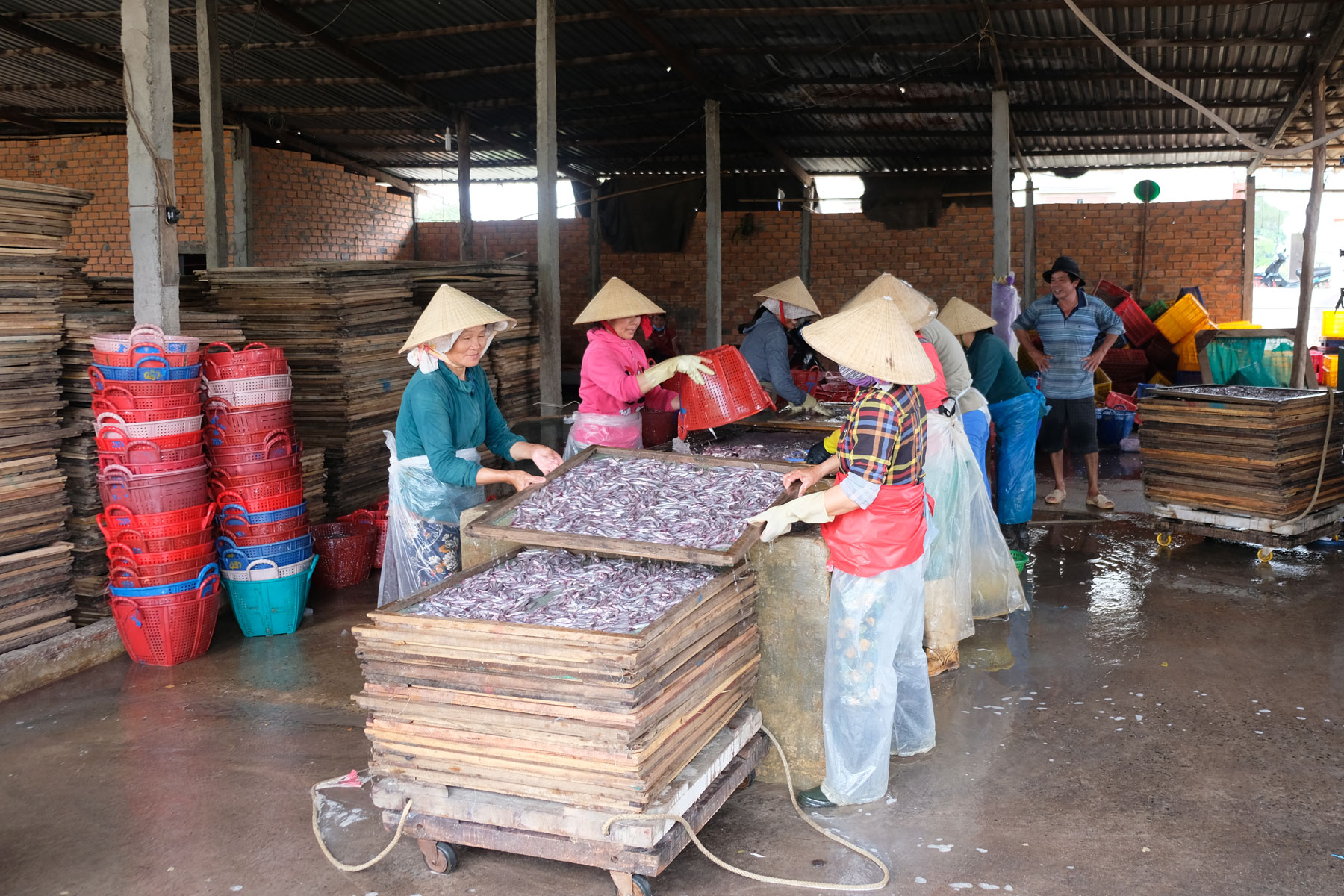Mehrere Frauen waschen kleine Fische, die zu Trockenfischen verarbeitet werden.