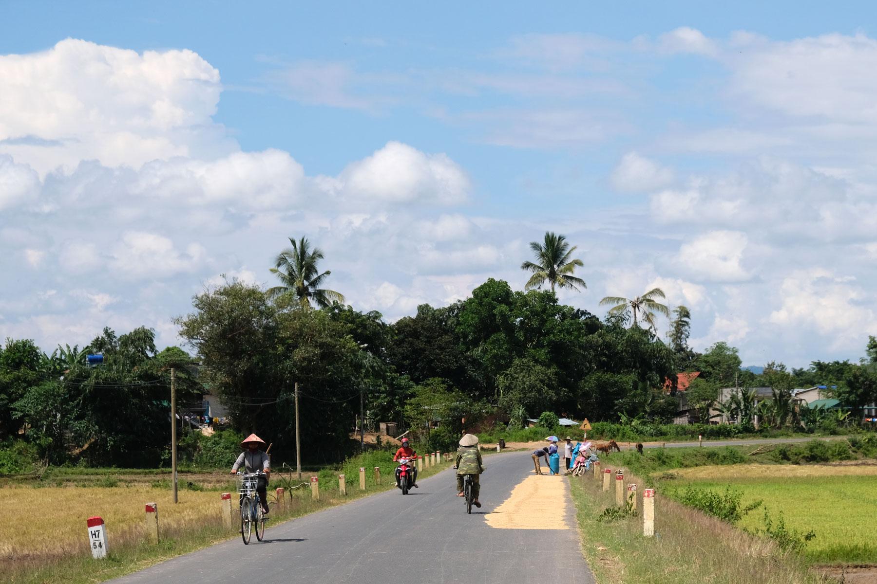 Auf der Straße ist eine Spur von Reis belegt, der hier zum Trocknen ausgebreitet wurde.